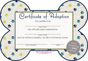 adoption reference letter pet adoption certificate