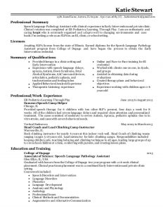 agreement letter sample katie stewart slpa resume