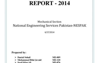agreement letter sample summer internship report national engineering services pakistan