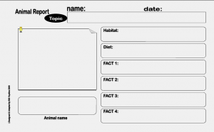 animal report template animal report