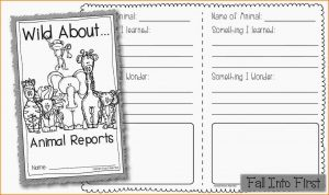 animal report template animal report template untitled