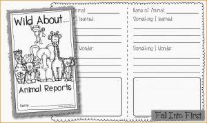animal report template animal report template untitled