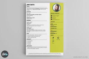 applicant form template cv template snap