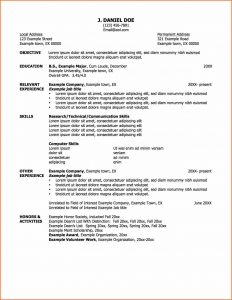 application for employment pdf job resume samples a job resume example professional resume samples of job mr sample resume