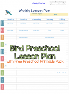 art lesson plans template bird free preschool printable worksheets and preschool lesson plan