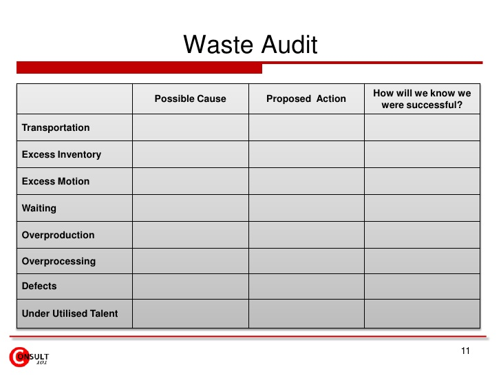 audit report template
