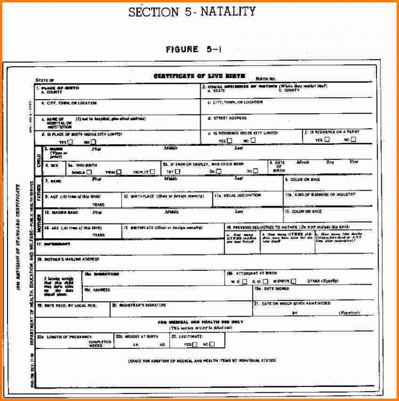 Certificate Templates: Sample Birth Certificate 11 Free