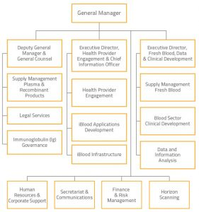 blank flow chart template for word organisational chart section