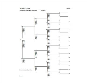 blank pedigree chart blank pedigree chart free pdf template