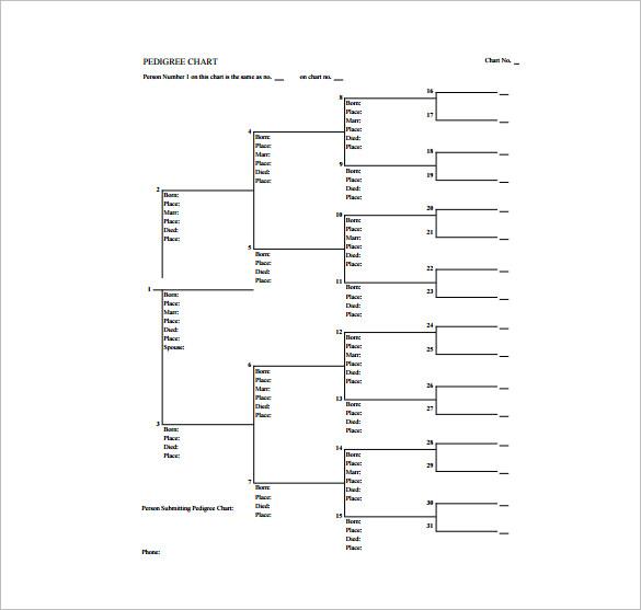 blank pedigree chart