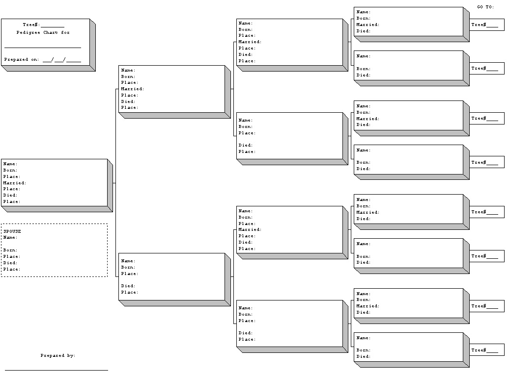 Blank Pedigree Chart Template Business