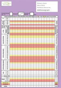 blood pressure record charts i mews pic feb