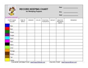 blood pressure recording chart il fullxfull fnj
