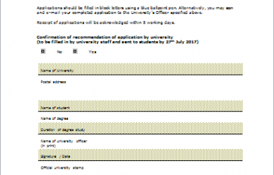 budget proposal template stipend application form