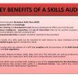 business action plan template training needs analysis skills auditing evaluation