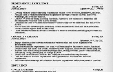 business analyst resumes business analyst resume sample image
