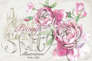 business cards with social media peony