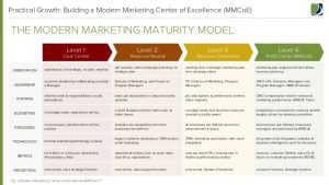 business plan outline example modern marketing center of excellence report