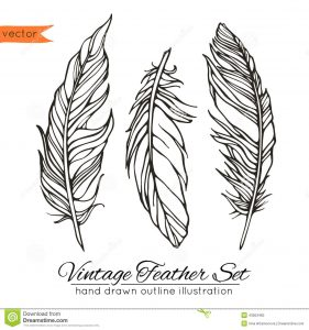 business plan outline template vintage feather set isolated white vector illustration template your decoration design