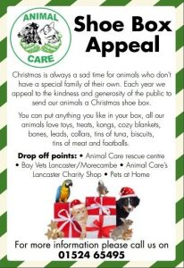 business thank you shoe box appeal