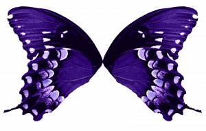 butterfly wing template butterfly wings light purple by fairyfindings de