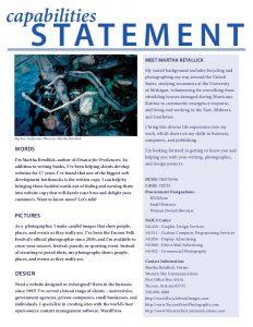 capability statement template capabilities statement
