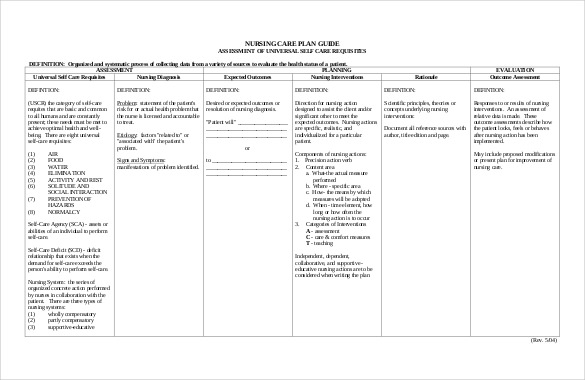care plan template