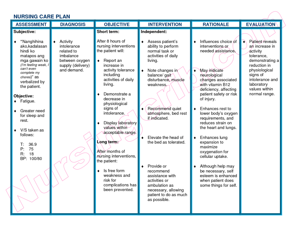 Care plan template template business for Nursing care plan format template