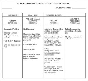 care plan template nursing care plan evaluation free pdf template