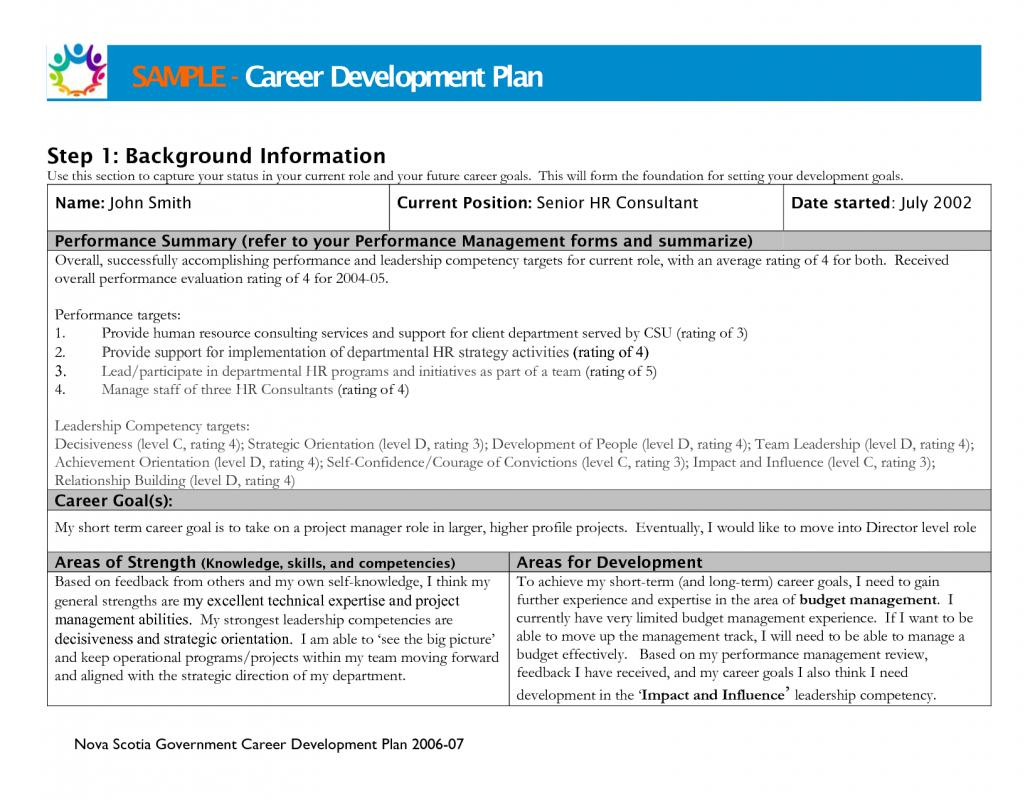 5 year career development plan template - career development plan template business