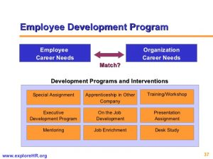 career development plan example competency based hr management