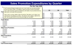 cash budget example promotional budget template
