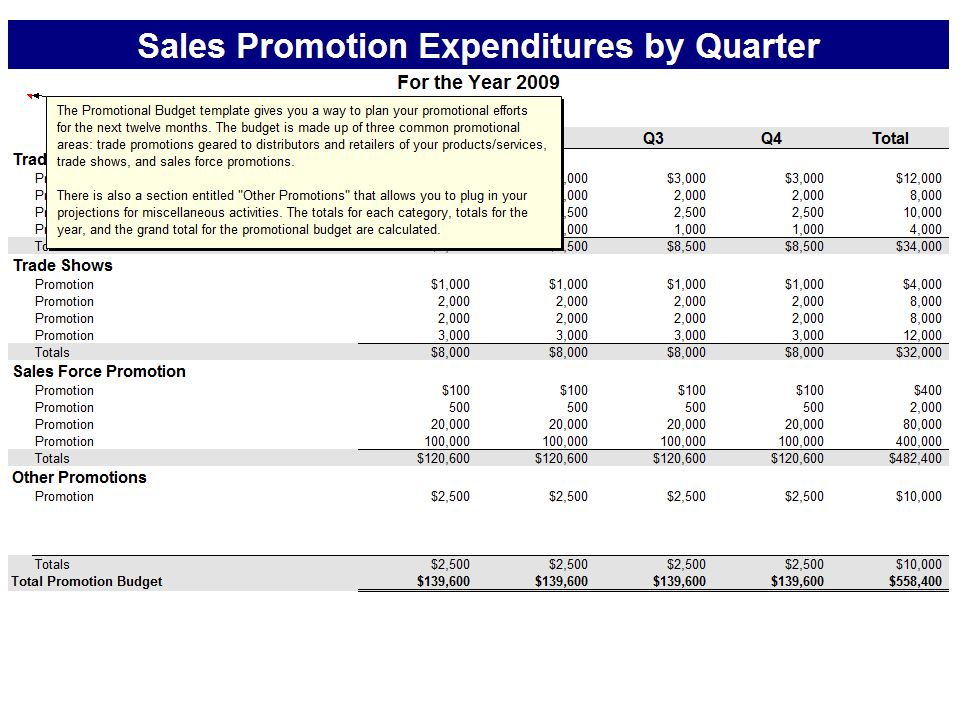 Cash Budget Example | Template Business