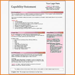 check stubs template capability statement template red capability statement