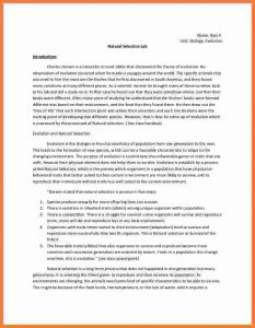 chemistry lab report template formal lab report example biologoy lab report