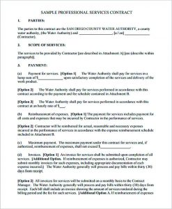cleaning contract template professional computer service contract template pdf download