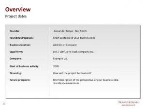 company description example de micco friends free business plan template english