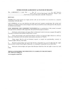 custody agreement template preview