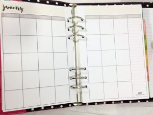 cute daily planner carpie diem planner month on pages