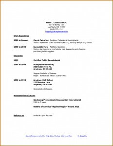 cv high school how to write a resume college student