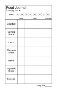 daily logs template daily food journal x