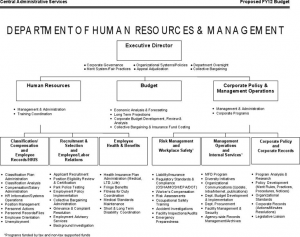 director of operations resume human resources organizational chart