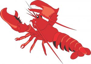 drawing of batman lobsterman clipart lobster claw clipart lobster clipart biyrpil