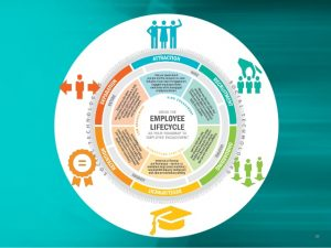 employee development plan embedding employee engagement throughout the employee lifecycle