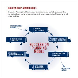 employee development plan templates succession planning model template
