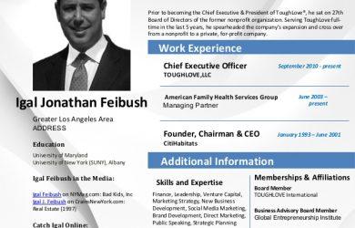 employment agreement samples career profile igal jonathan feibush