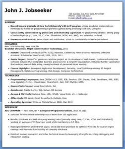 entry level software engineer resume director of it resume