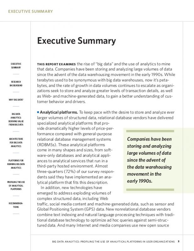 Example Of An Executive Summary  An Executive Summary