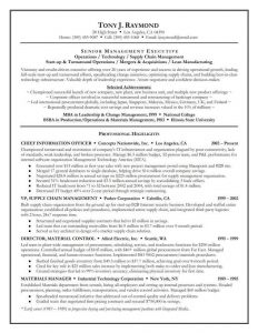 example of an executive summary resume executive summary examples for senior management executive with selected achievements and professional