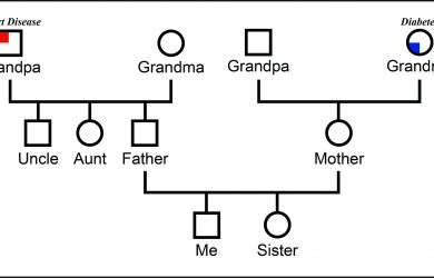 example of genogram genogram